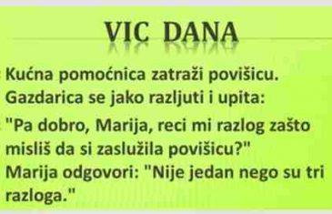 VIC DANA: Gazdarica i kućna pomoćnica